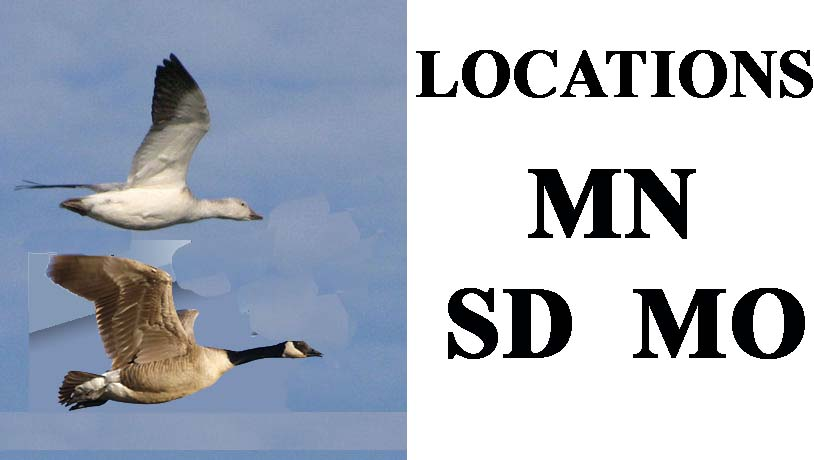 waterfowl hunting locations and hunting guide service