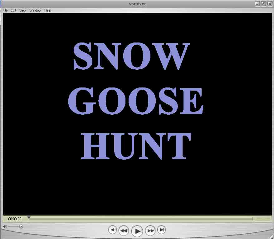 SD snow goose hunting guides